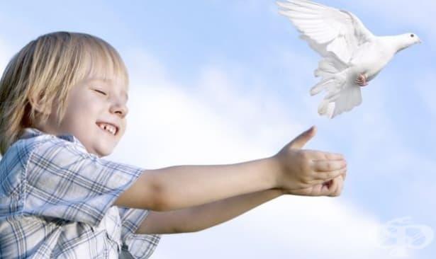 """Общественият съвет към """"Фонда за лечение на деца"""" е с променен състав - изображение"""
