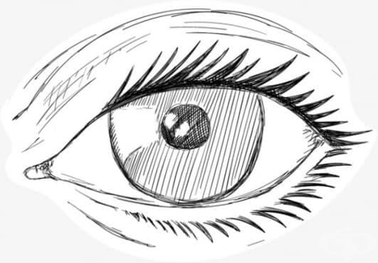 Офталмолози от Варна обявиха конкурс за детска рисунка и есе - изображение