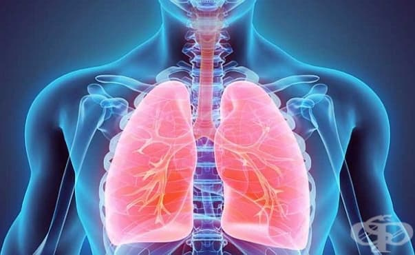 Тази седмица започват безплатните прегледи за туберкулоза в цялата страна - изображение