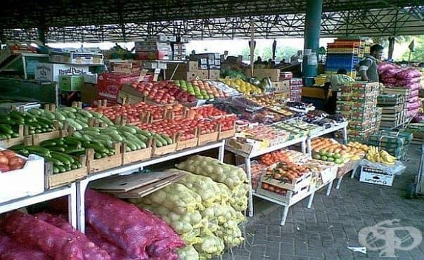 Ще правят модерна лаборатория за контрол на вредните вещества в плодовете и зеленчуците в Кърджали - изображение