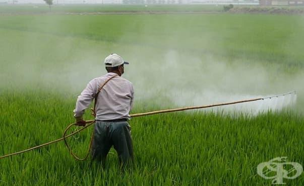 Учени разработиха гел, предпазващ от действието на пестицидите - изображение