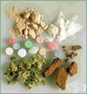 Семинар за повишаване превенцията срещу употребата на наркотични вещества в Бургас - изображение