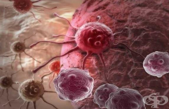 Честият прием на антибиотици е предпоставка за рак - изображение