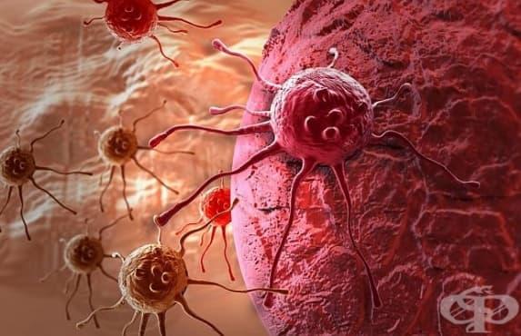 Българин участва в създаването на нова теория за лечение на рак - изображение