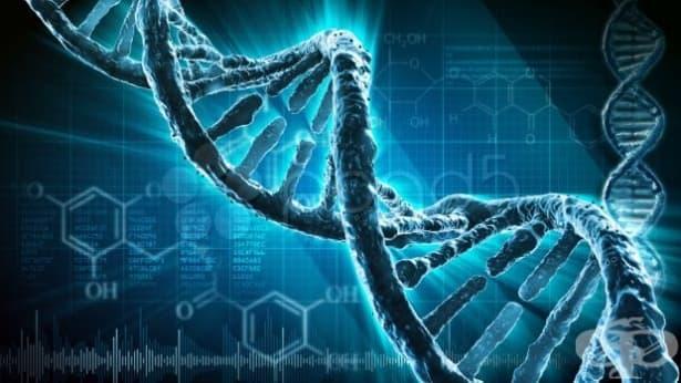 Разработиха нов метод за синтез на ДНК - изображение