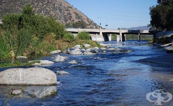 Повече от половината случаи на удавяне се случват във вътрешни водоеми - изображение