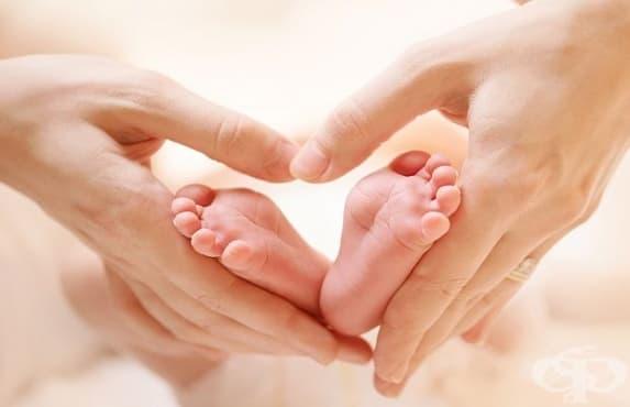 Стартира приемът на документи за двойки с репродуктивни проблеми в Стара Загора - изображение
