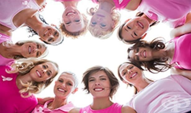 Розовият кемпер ще посети Велико Търново и Габрово - изображение