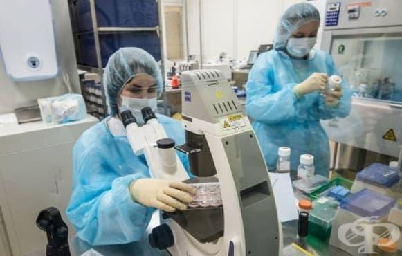 Екип от Института по онкология в Томск разбра как да разпознае клетките, образуващи метастази при рак на гърдата - изображение