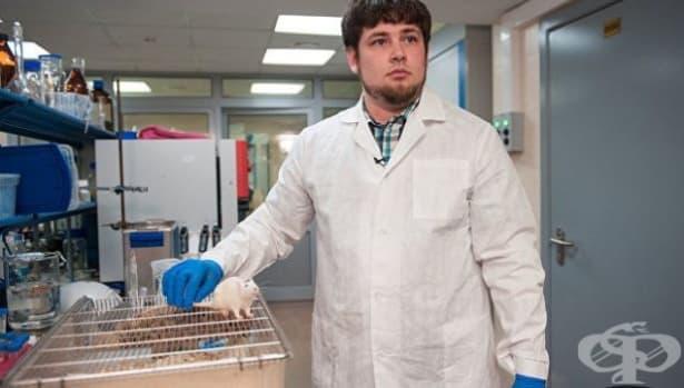 Руски препарат удължи с близо 70%  живота на болни от рак мишки - изображение