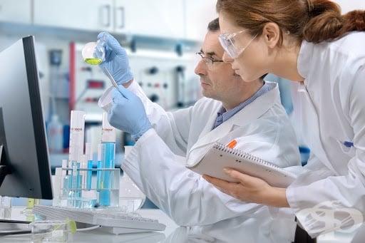 Изследователи от Цюрих откриха ново вещество за предотвратяване на съдова калцификация - изображение