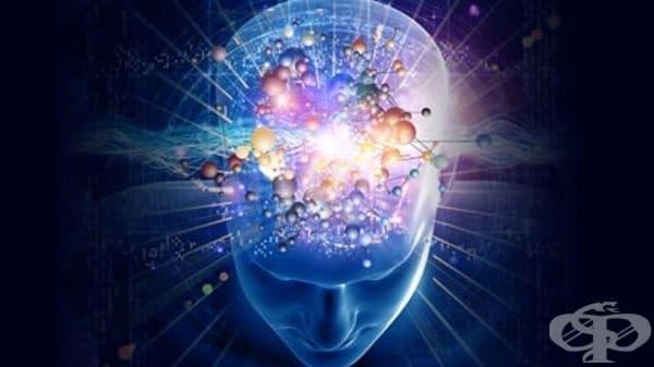 Самочувствието на човек може да бъде подобрено с трениране на мозъка  - изображение