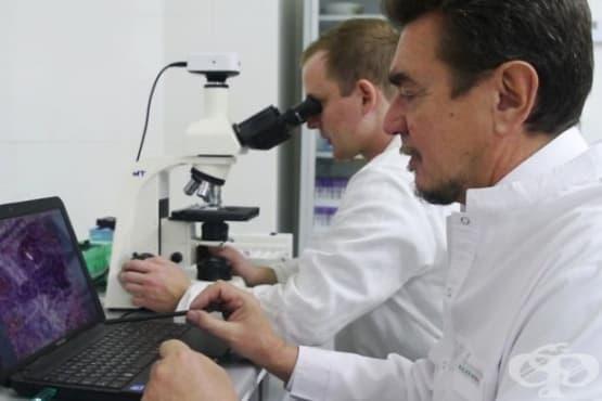 Създадоха лекарство против артрит без странични ефекти - изображение
