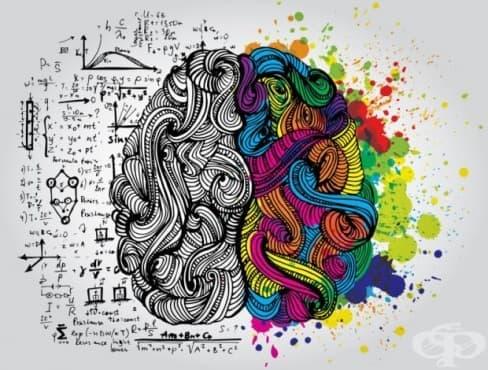 Седмицата на психологията стартира днес и продължава до 12 април - изображение
