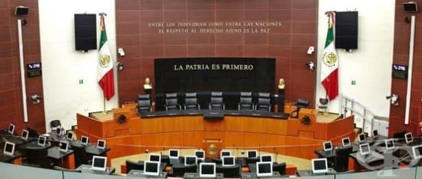 В Мексико взеха решение за донорството - изображение