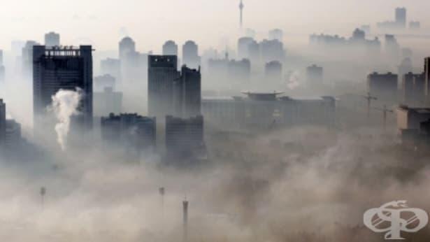 Скопие въвежда безплатен транспорт заради замърсяването на въздуха - изображение