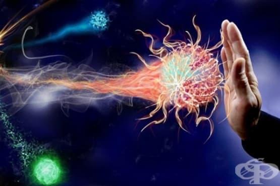 """Започват тестове върху хора на """"ваксина"""", която ще елиминира рака - изображение"""