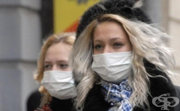 В Габрово е регистриран случай на свински грип - изображение