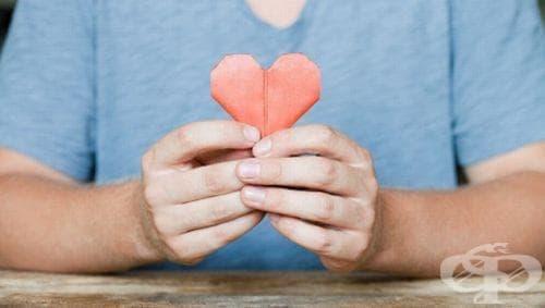 Три стъпки предприемат Агенцията по трансплантации и МЗ за увеличаване на донорството в България - изображение