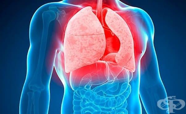 Сливенската многопрофилна болница организира прегледи за туберкулоза и лекции за детското здраве - изображение