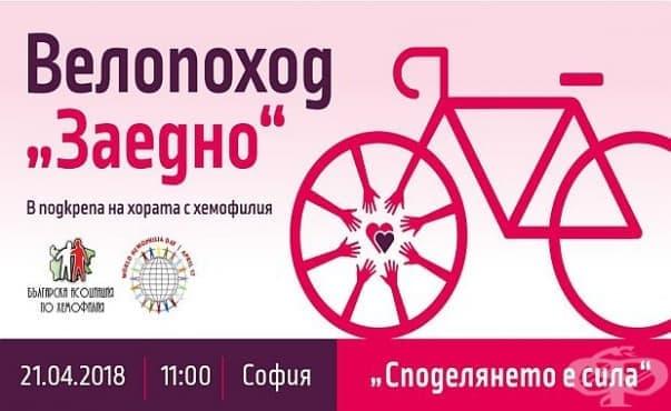 В четири града ще се проведе велопоход в подкрепа на хората с хемофилия - изображение