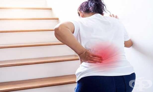 Вертебропластиката връща здравината на гръбнака при фрактури, причинени от остеопороза - изображение
