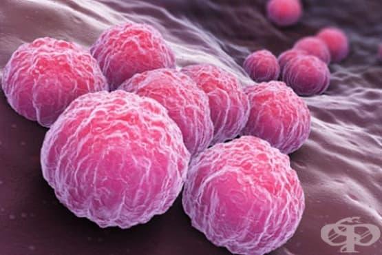 Руски учени разработиха метод за диагностика на хламидията с помощта на златни наночастици - изображение