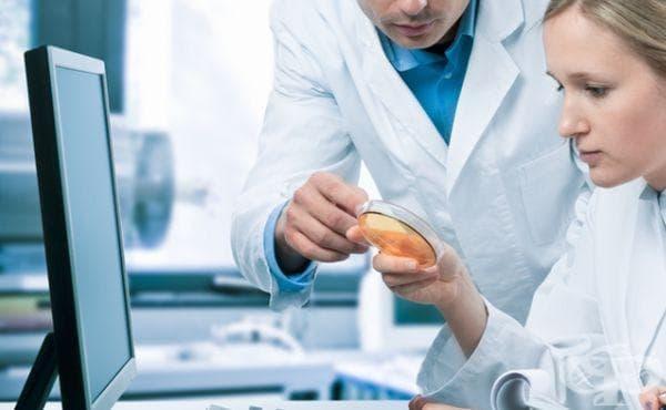 Замразяват тъкан от тестисите на момче, за да може да има деца след лъче- и химиотерапия - изображение