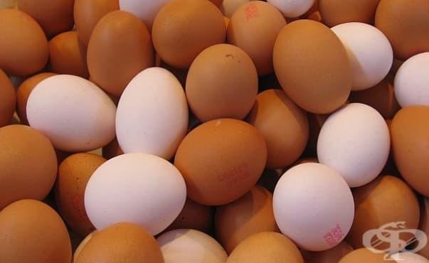 Вече има и български яйца с фипронил - изображение