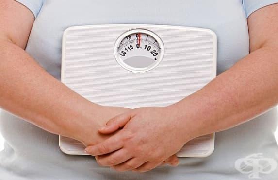 Затлъстяването нараства с дни в световен мащаб - изображение