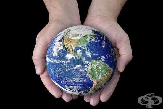 """178 страни ще се включат в глобалната инициатива """"Часът на земята"""" - изображение"""