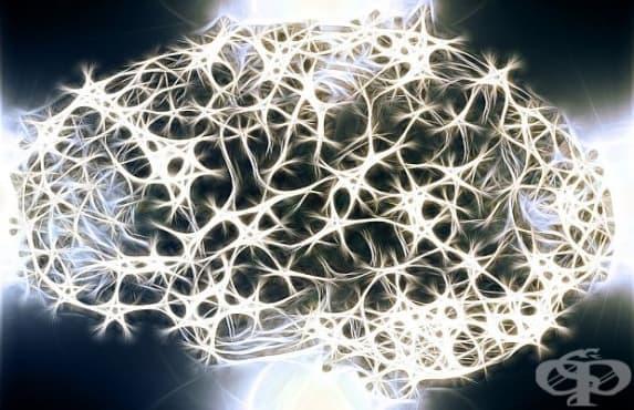 Учени ще използват вируса Зика за лечение на рак на мозъка  - изображение