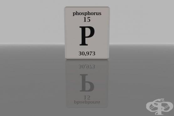 Фосфор - роля в организма и хранителни източници - изображение