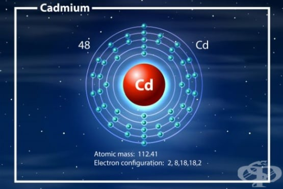 Кадмий - значение за организма и източници - изображение