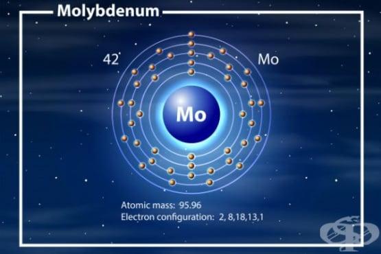 Молибден - роля в човешкото тяло и хранителни източници - изображение