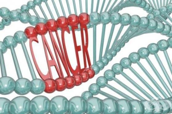 Епидемиология на туморите - изображение