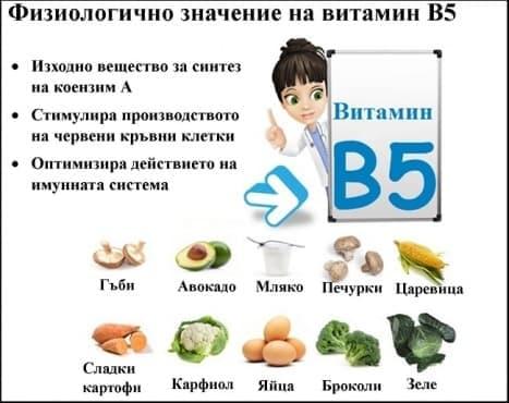 Физиологично значение на витамин В5  - изображение