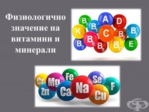 Физиологично значение на витамини и минерали - изображение