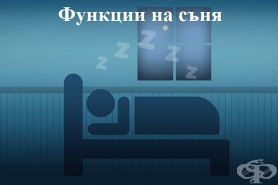 Функции на съня - изображение
