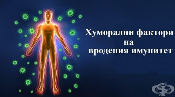 Хуморални фактори на вродения имунитет - изображение