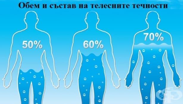 Обем и състав на телесните течности - изображение
