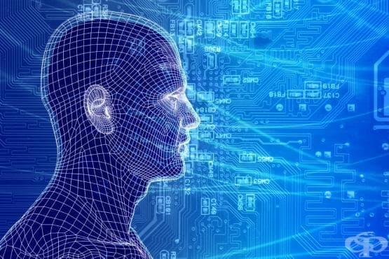Организация на невроните в нервни мрежи - изображение