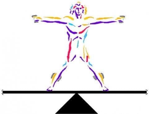 Хомеостаза - изображение