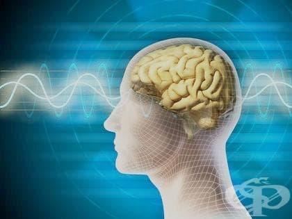 Електроенцефалография - изображение