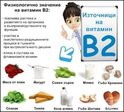 Физиологично значение на витамин В2 - изображение