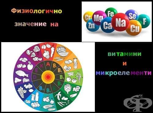 Физиологично значение на витамини и микроелементи - изображение