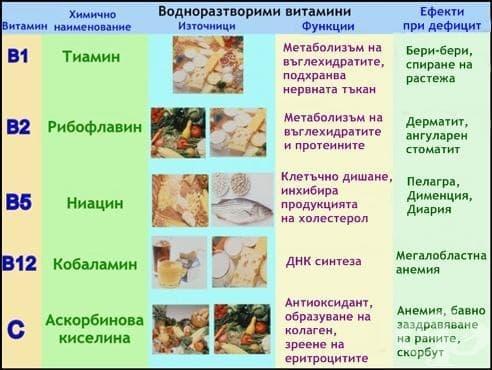 Физиологично значение на водоразтворимите витамини - изображение