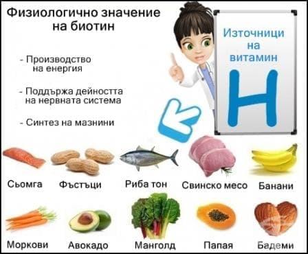 Физиологично значение на биотина - изображение