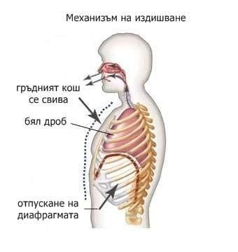 Механика на издишване - изображение