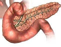 Значение на задстомашната жлеза - изображение